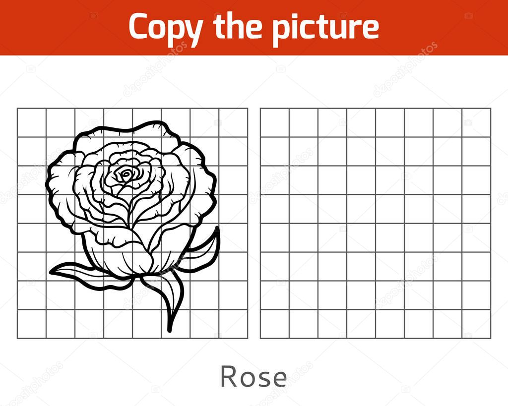 Copy the picture, Rose