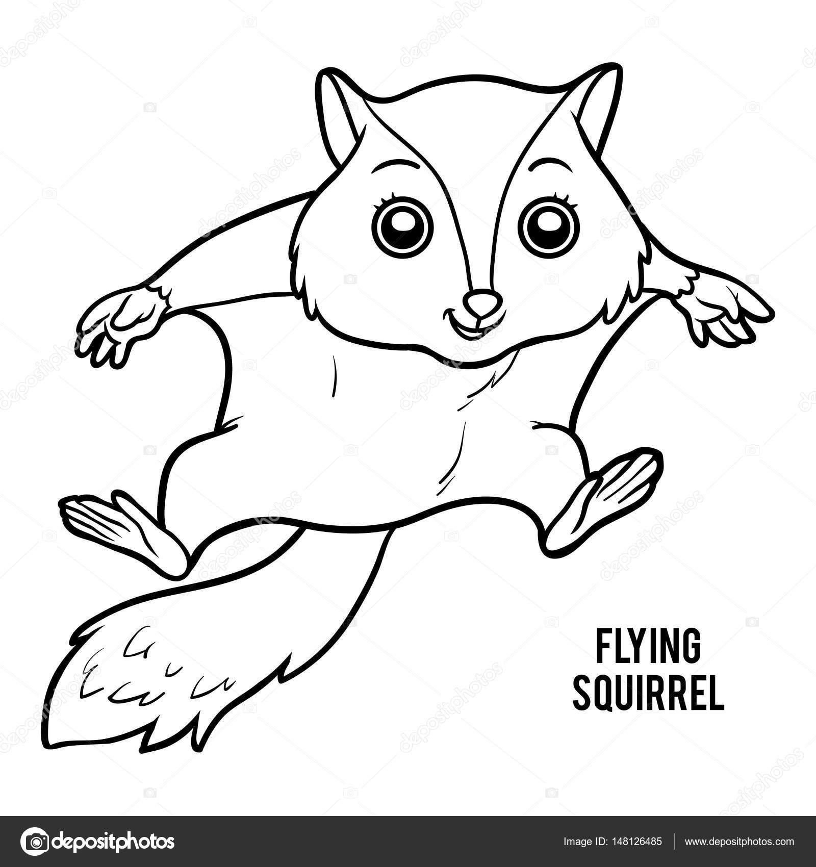 Libro de colorear, ardilla voladora — Vector de stock © ksenya_savva ...