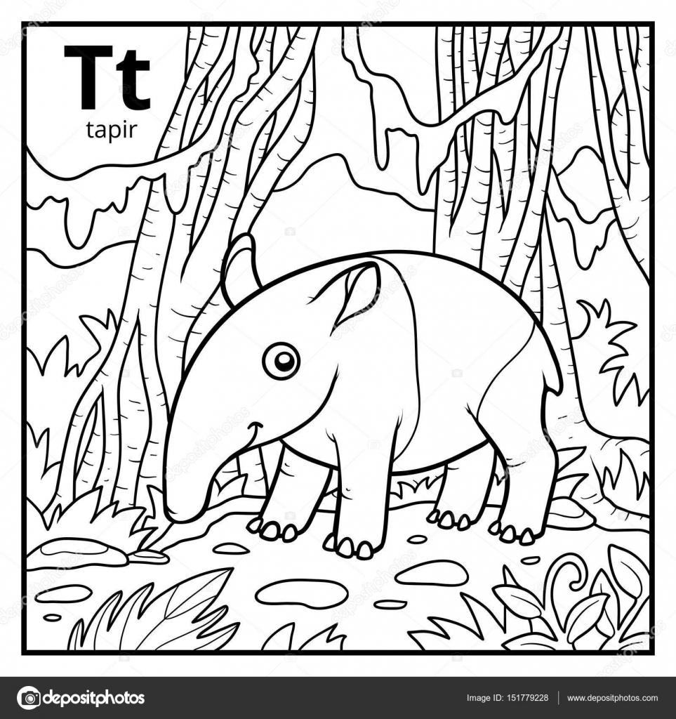 Libro para colorear, alfabeto descolorido. Letra T, tapir ...