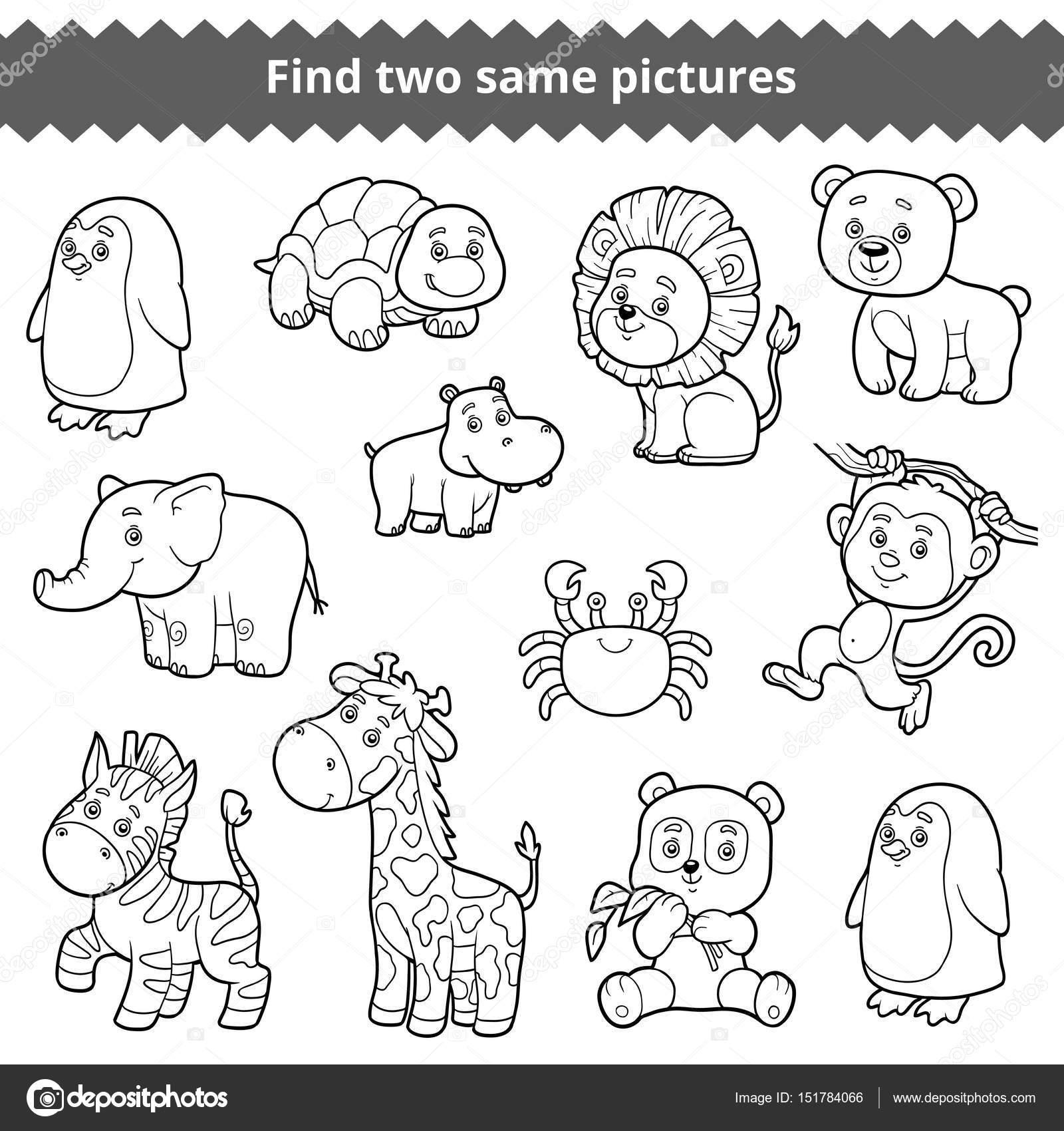 Encontrar dos fotos idénticas, educación para los niños, conjunto de ...
