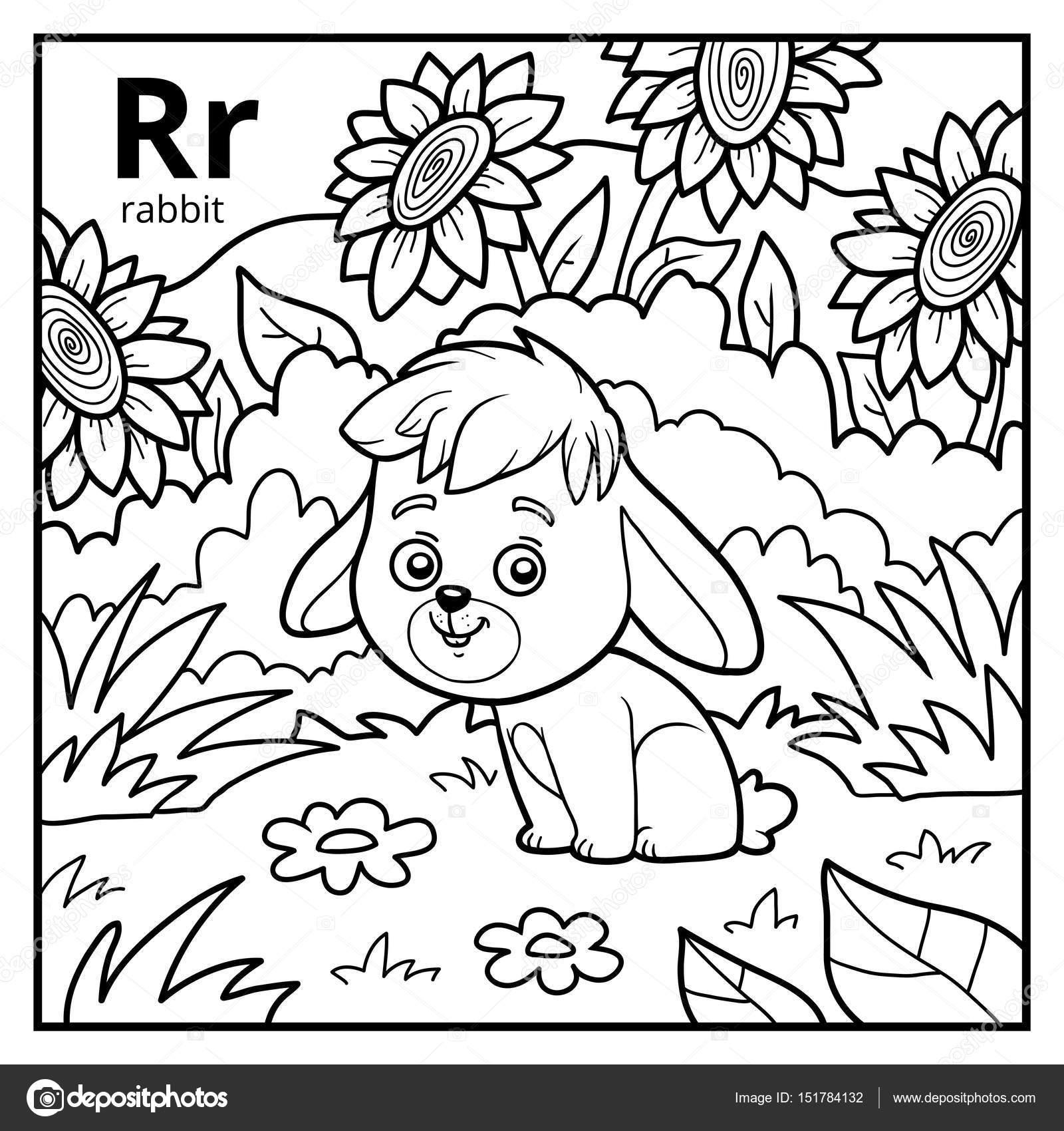 Libro para colorear, alfabeto descolorido. Letra R, conejo — Vector ...