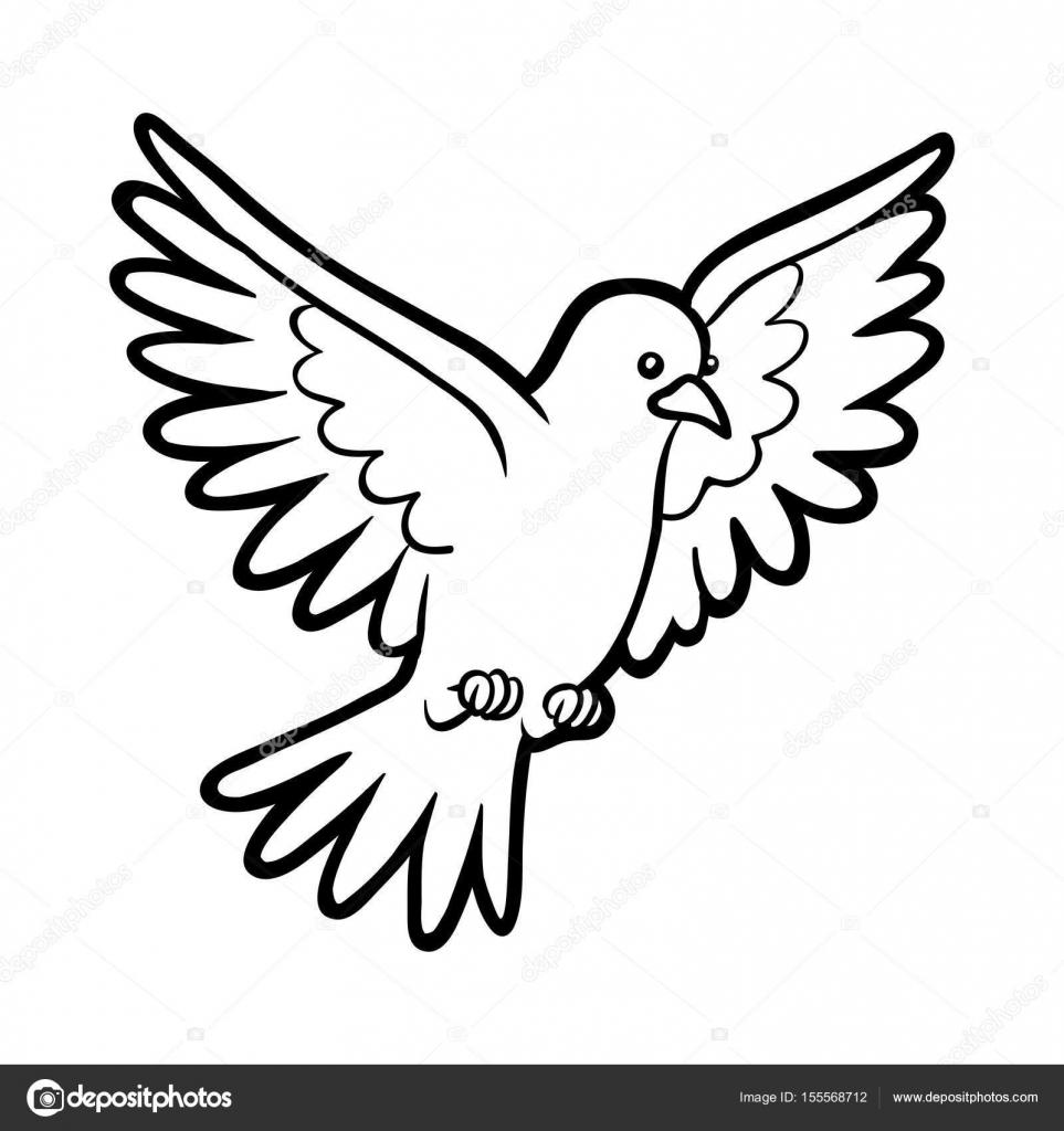 Boyama Kitabı Güvercin Stok Vektör Ksenyasavva 155568712
