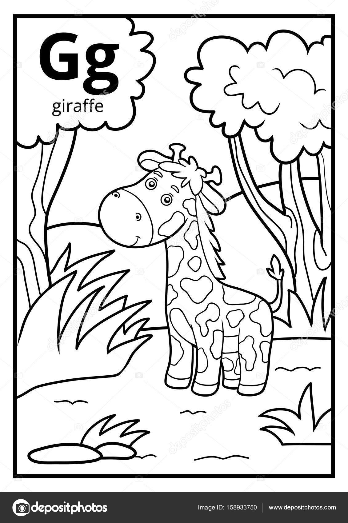 Libro para colorear, alfabeto descolorido. Letra G, jirafa — Archivo ...