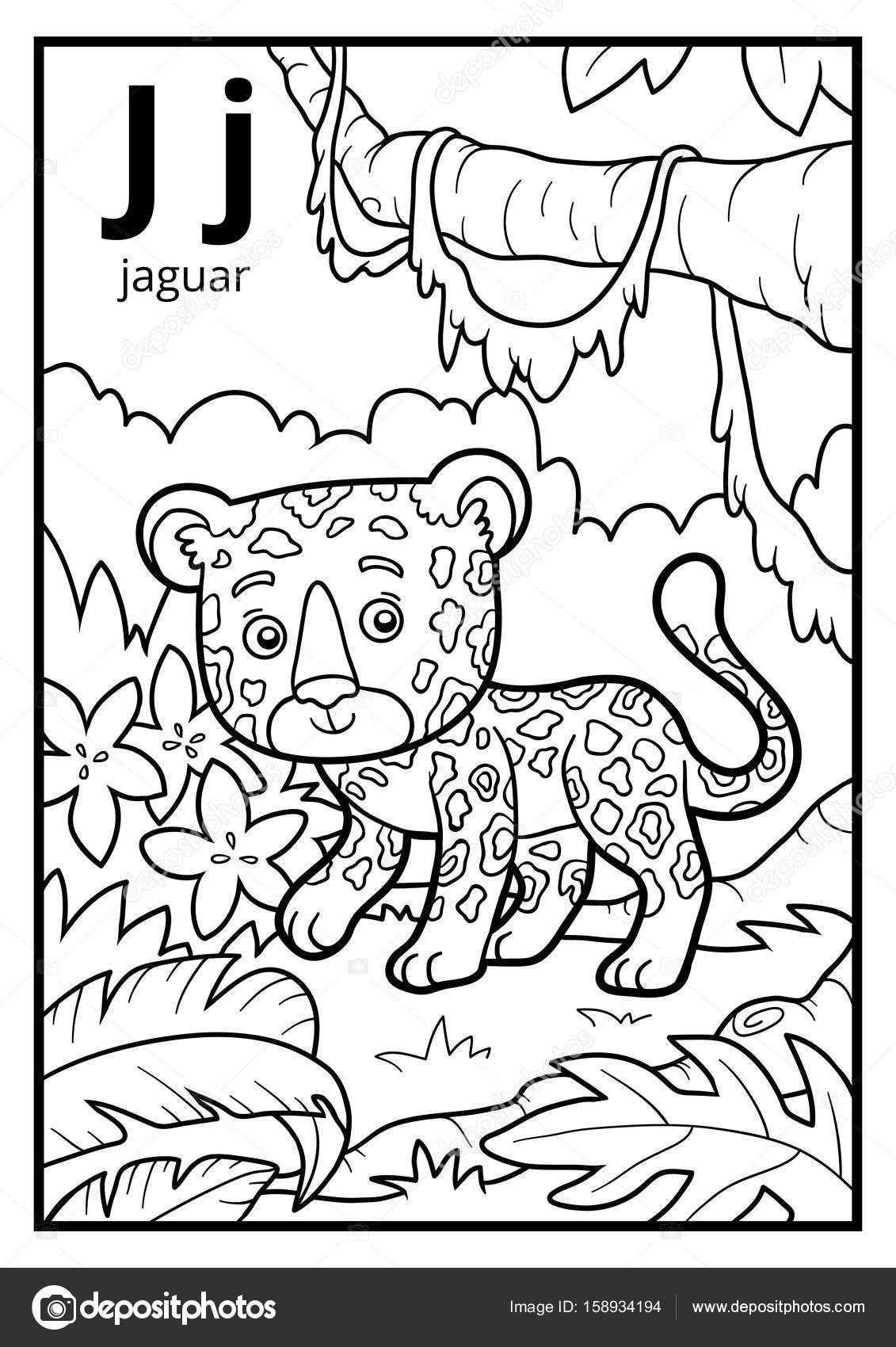 Libro para colorear, alfabeto descolorido. Letra J, jaguar — Archivo ...