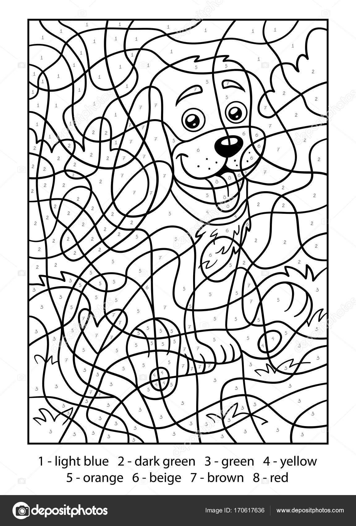 kleuren op nummer hond stockvector 169 ksenya savva