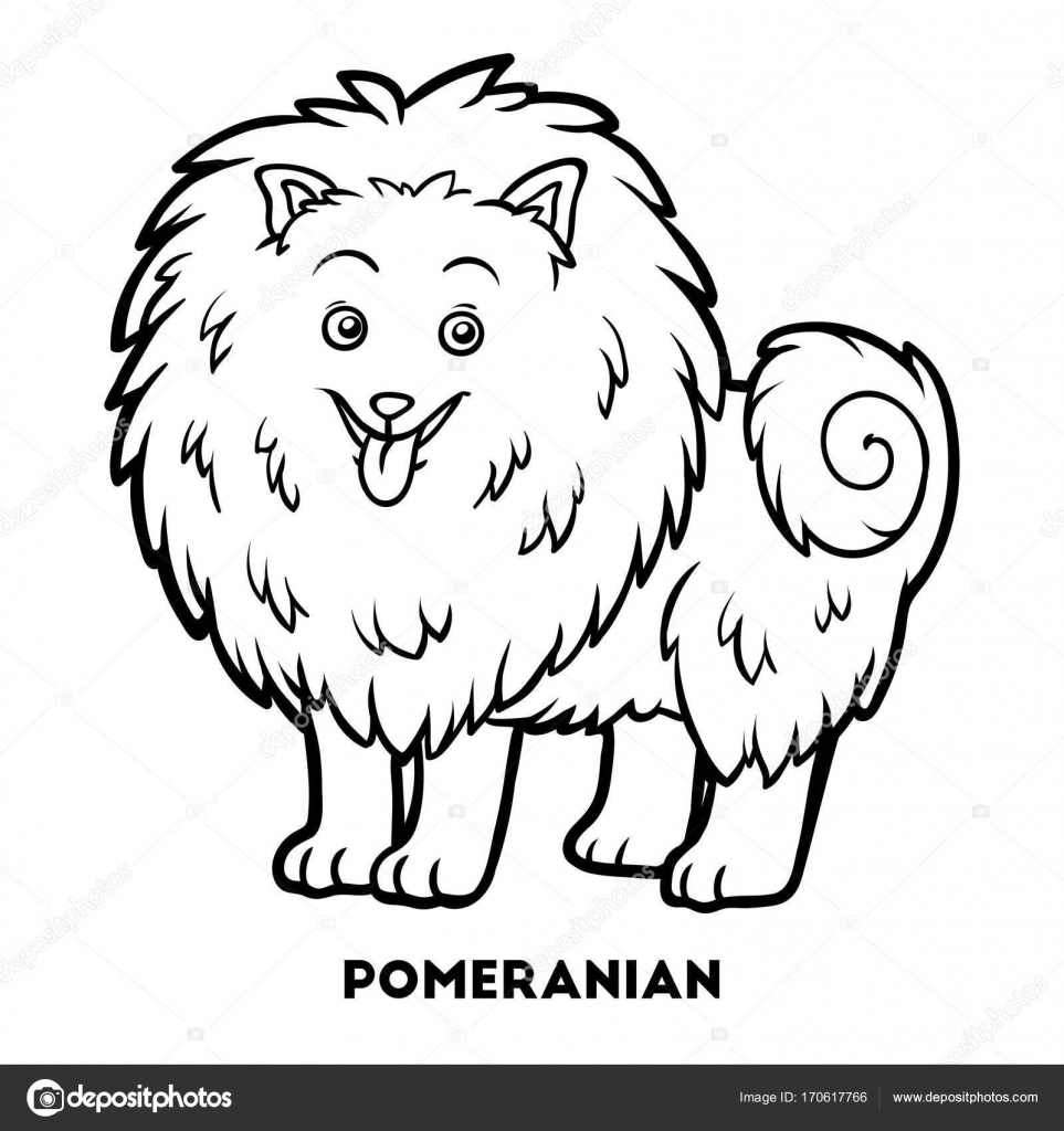 Coloring Book For Children Dog Breeds Pomeranian Vector By Ksenya Savva