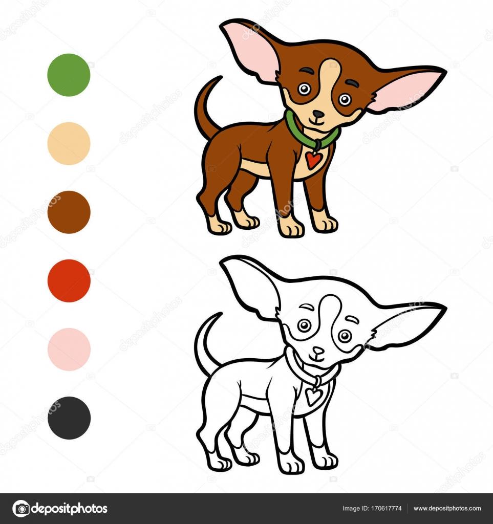 Libro de colorear, razas de perros: Chihuahua — Vector de stock ...