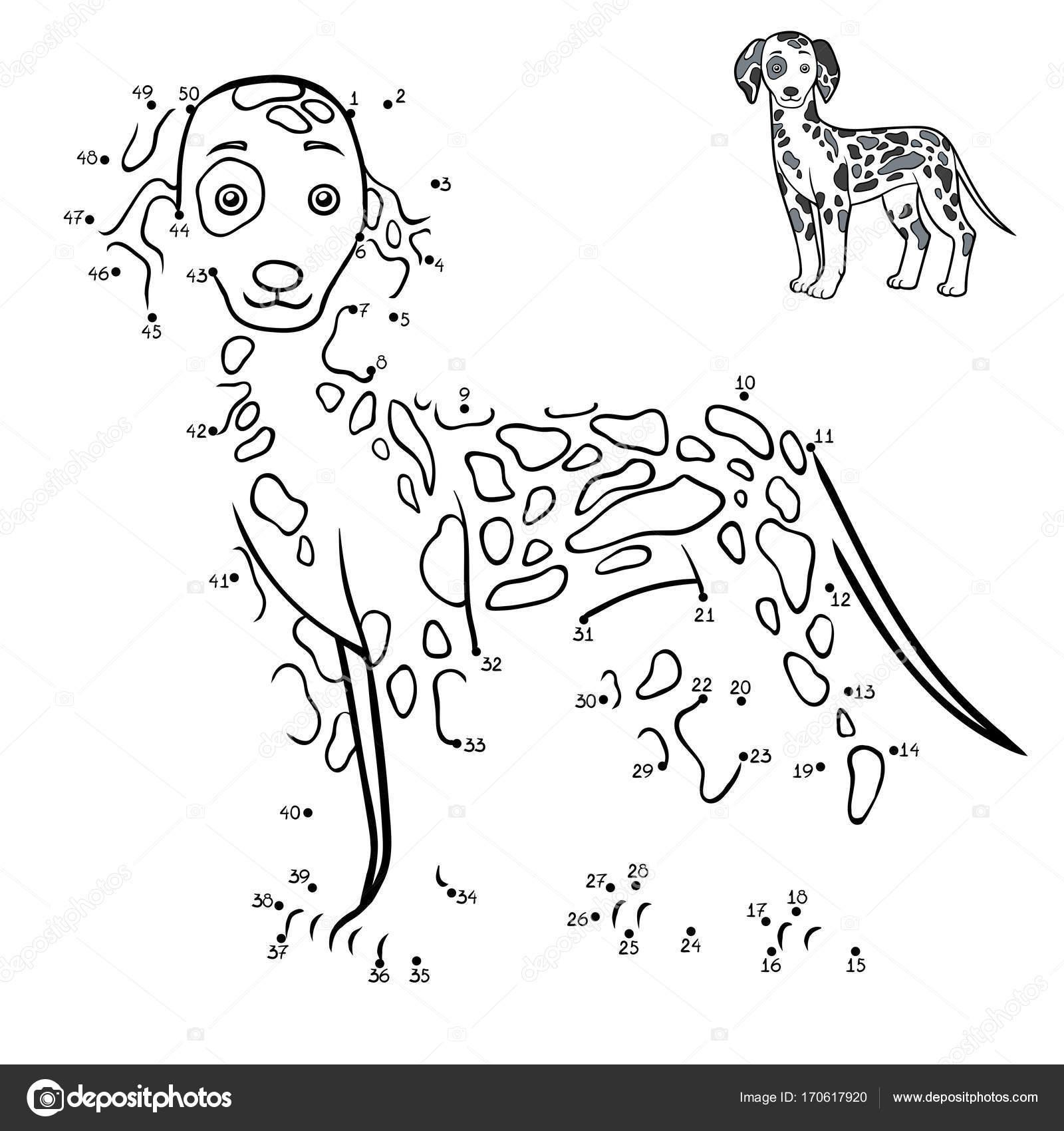 Juego de números, razas de perro: dálmata — Archivo Imágenes ...