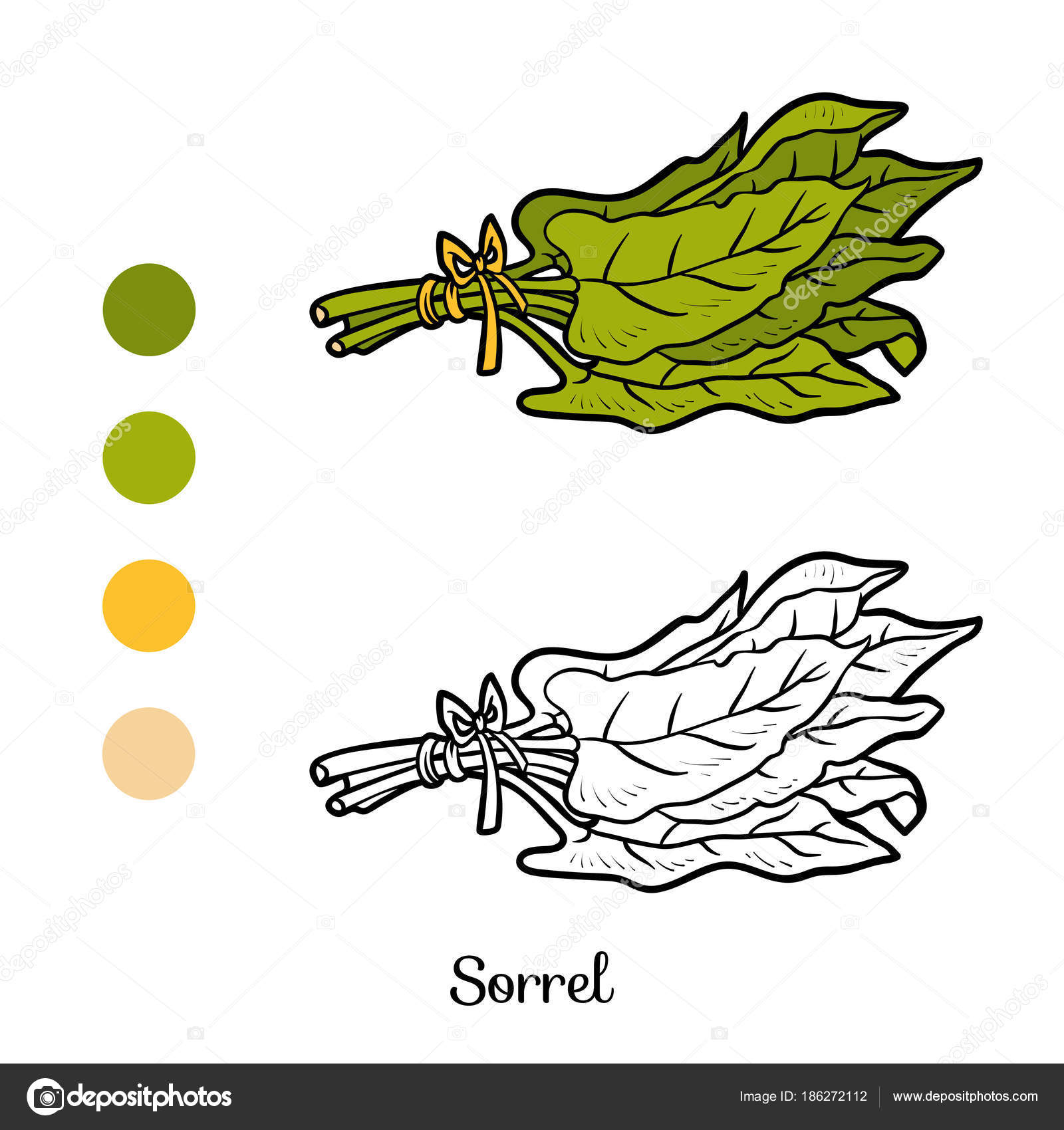 Coloring Book Sorrel Stock Vector Ksenyasavva 186272112