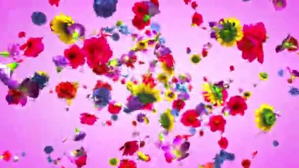 4k-felrobbanó színes virágok