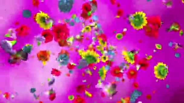Explodující barevné květiny v rozlišení 4k
