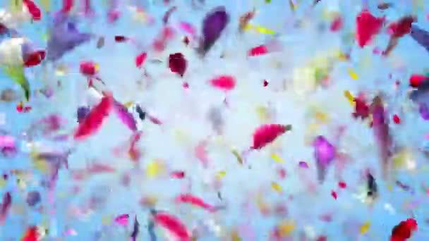 Explodující květiny lístků v rozlišení 4k