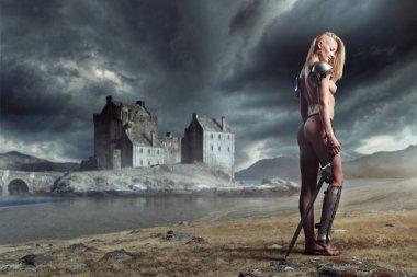 """Картина, постер, плакат, фотообои """"сексуальная женщина-воин с мечом на спине """", артикул 134217768"""