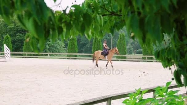 žena jízda na koních krásnou hnědou klisnu a školení v písčitých venkovní manéž v horse ranch