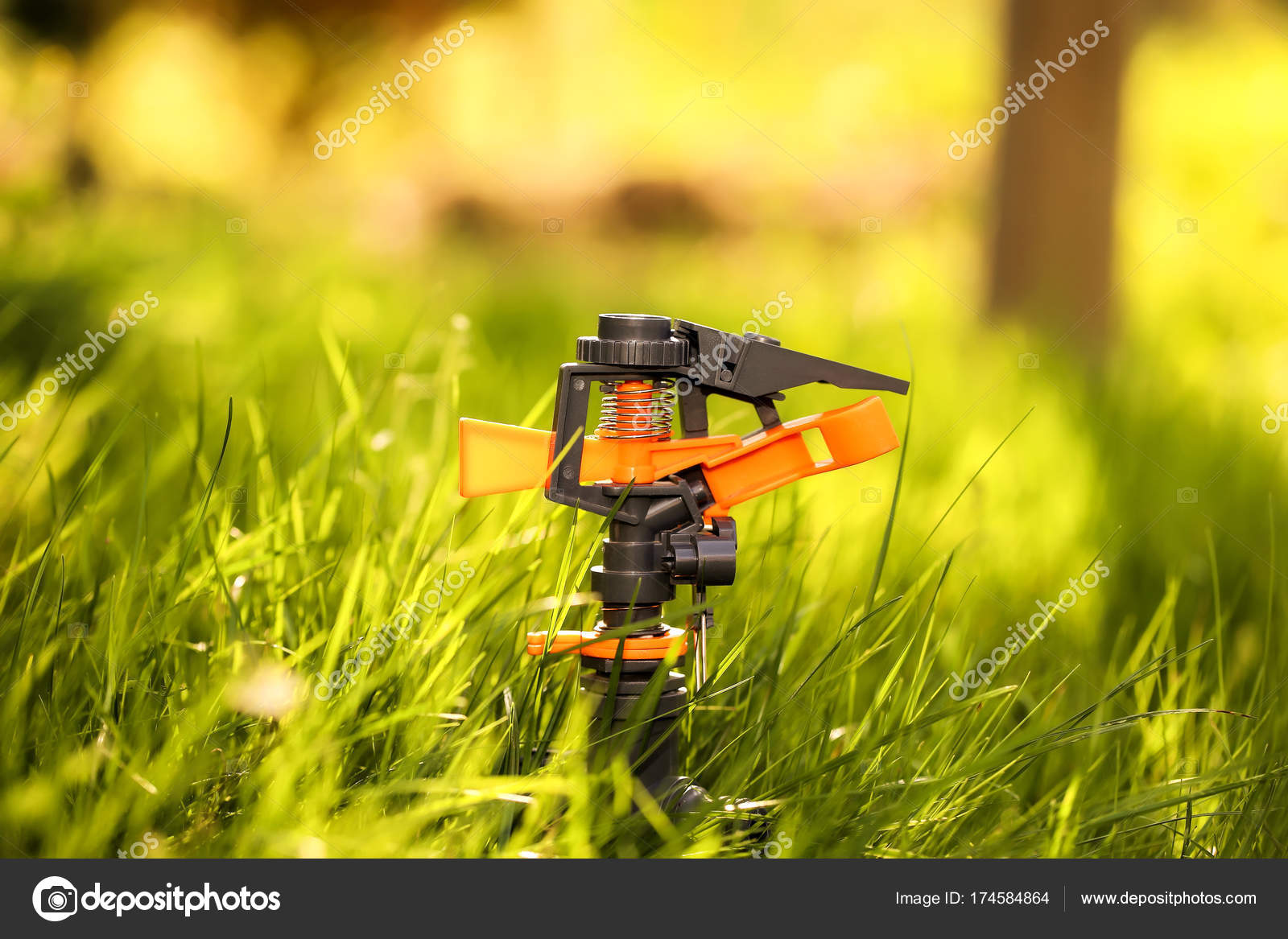 Water Sprinkler In The Garden Copy Space For Text And