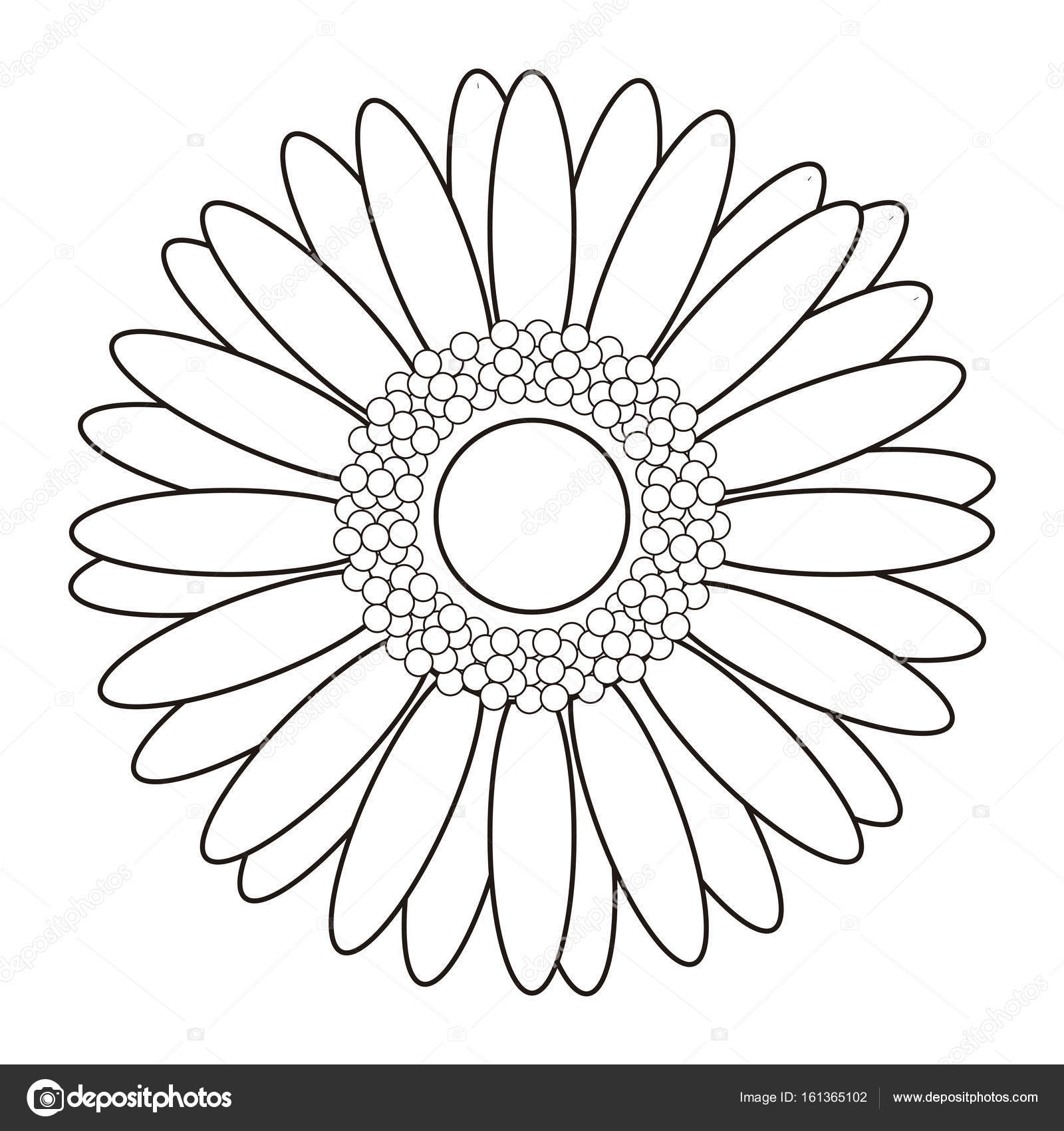 Isolated Flower Outline Stock Vector Laudiseno 161365102