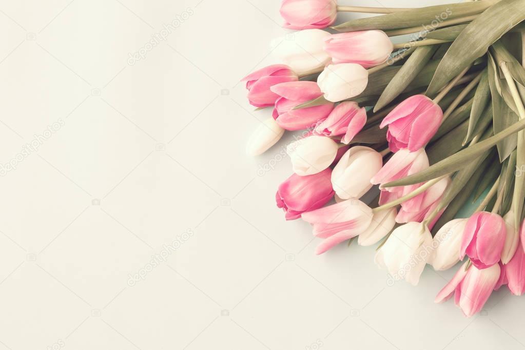 Various vintage tulips