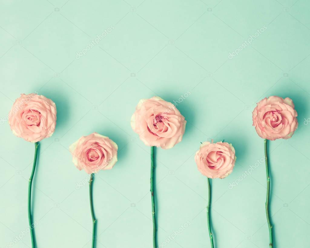 Roses on mint