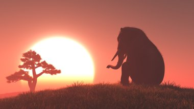 Silhouette of elephant and tree