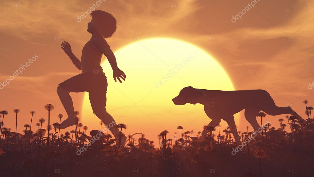 Child and a dog on the field at sunset