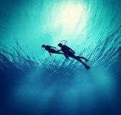 Tauchgänge schwimmen unter Wasser