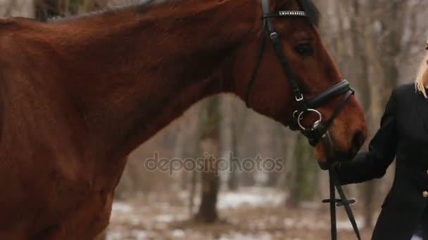 dívka a kůň v parku