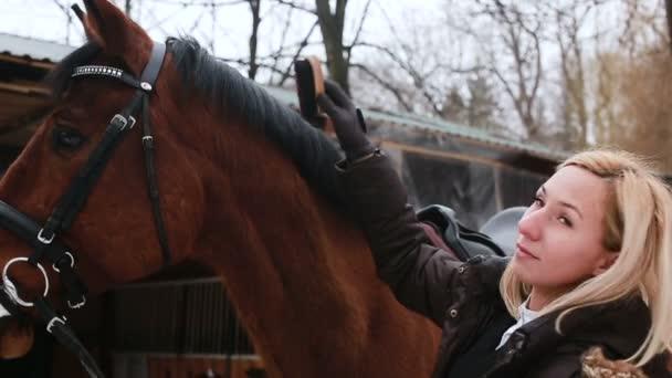 Mädchen kratzt Bürste ihr Pferd