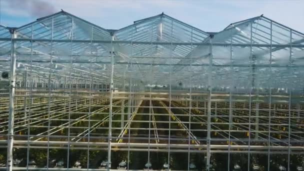 Aerial video of greenhouses