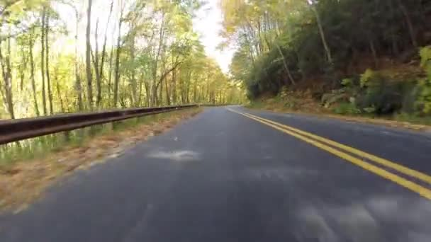 Listy, foukání za auto na Blue Ridge Parkway