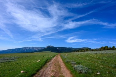 Dirt Road Heads into the Wilderness in Wyoming
