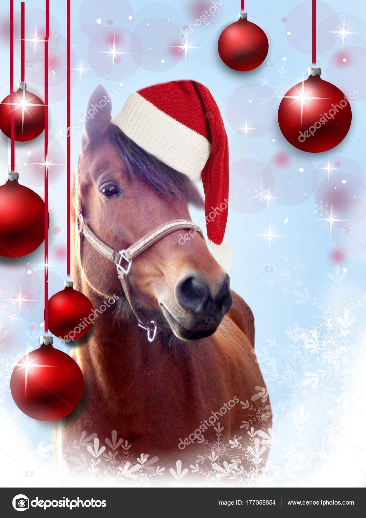 Immagini Di Natale Con Cavalli.Immagini Auguri Di Buon Natale Con Cavalli Cartolina D
