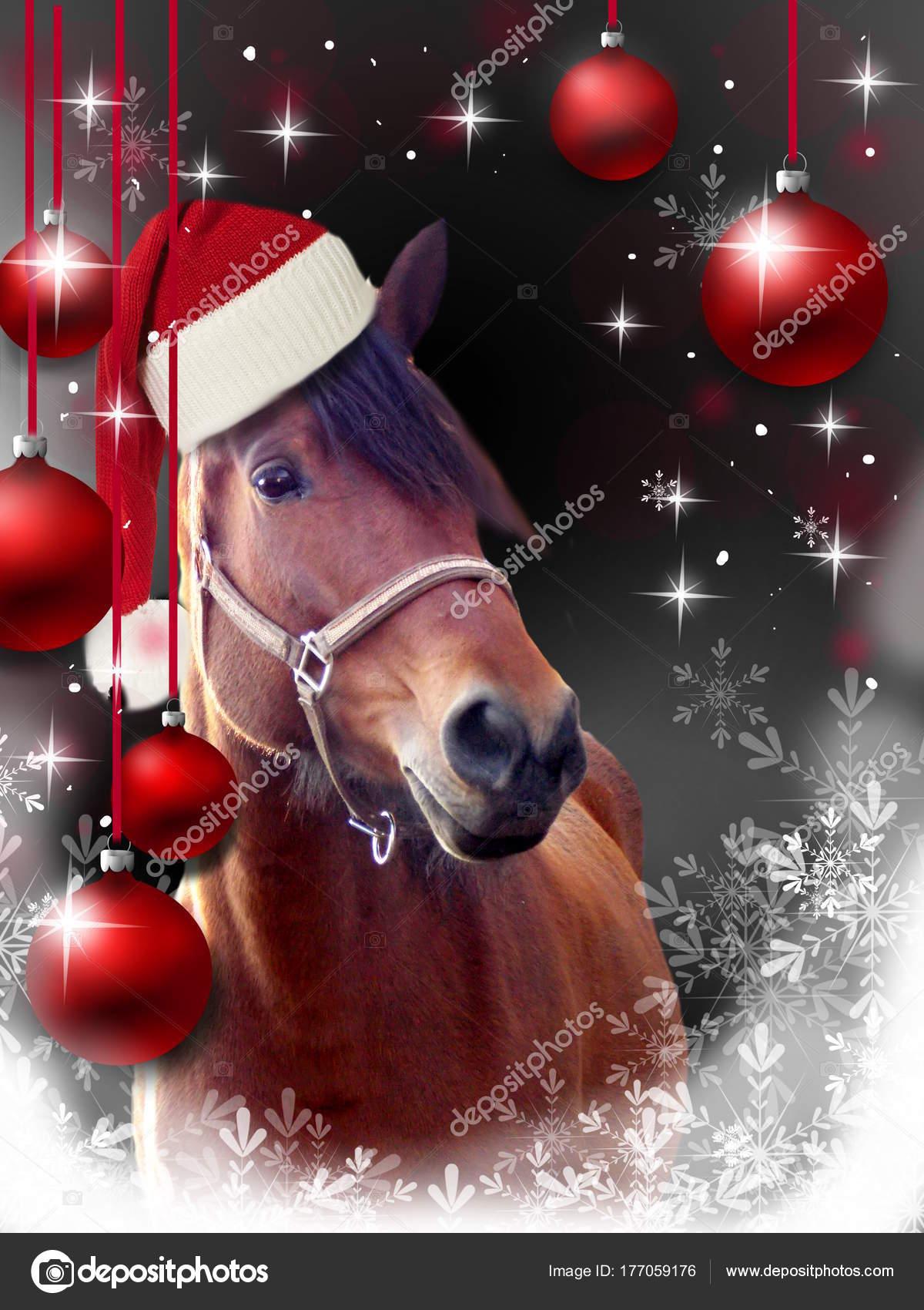 Immagini Di Natale Con Cavalli.Immagini Auguri Di Buon Natale Cavalli Cartolina D Auguri
