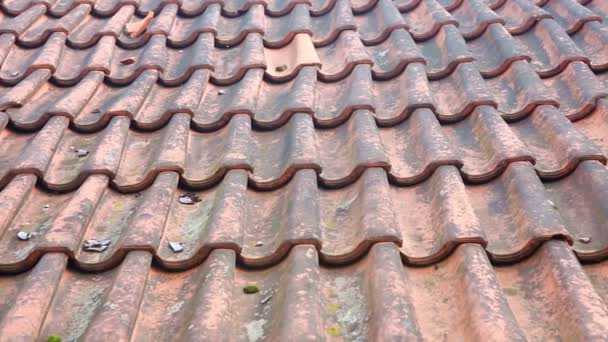 Detailní záběr Staré červené střechy s obklady