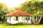 vecchia casa di legno circondata da alberi di Palma