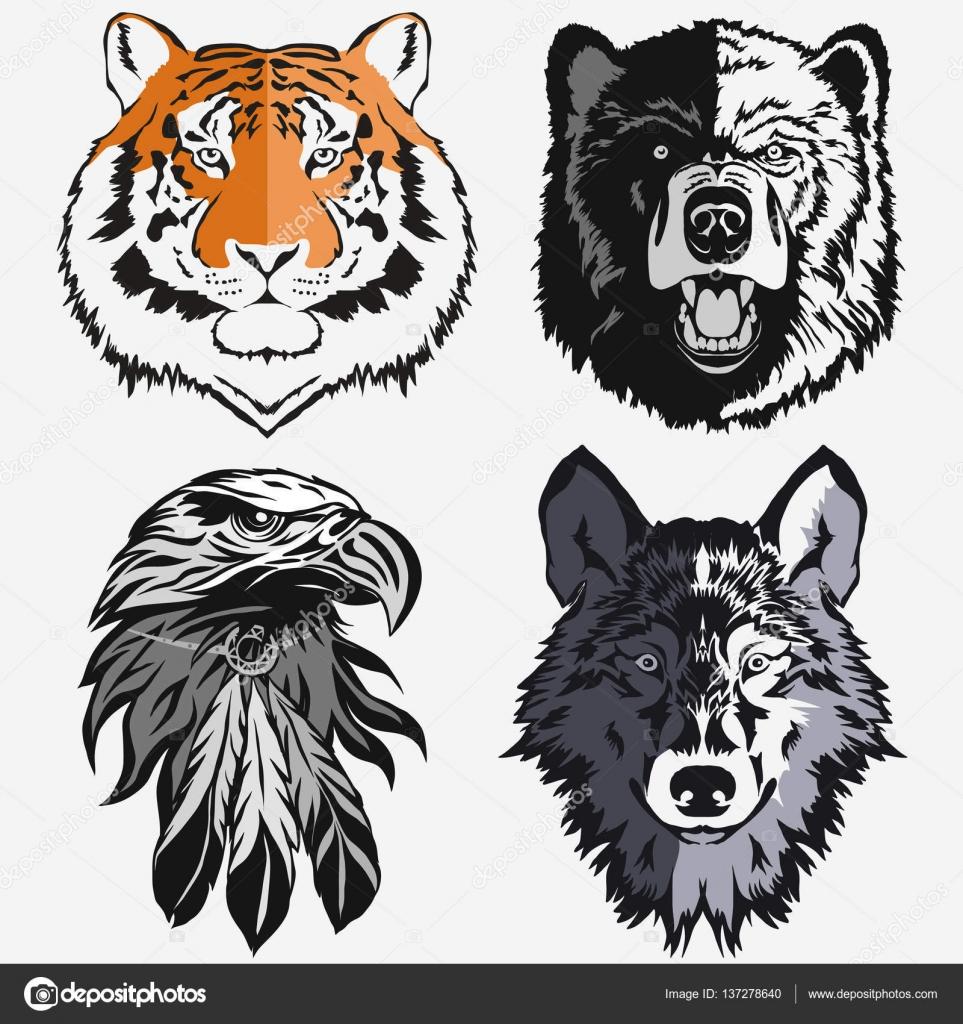 Logo águila Lobo Oso Tigre Set Vector