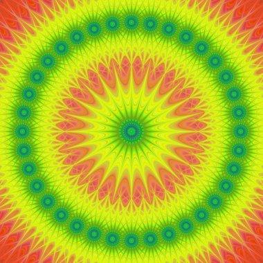 Multicolored mandala design background vector