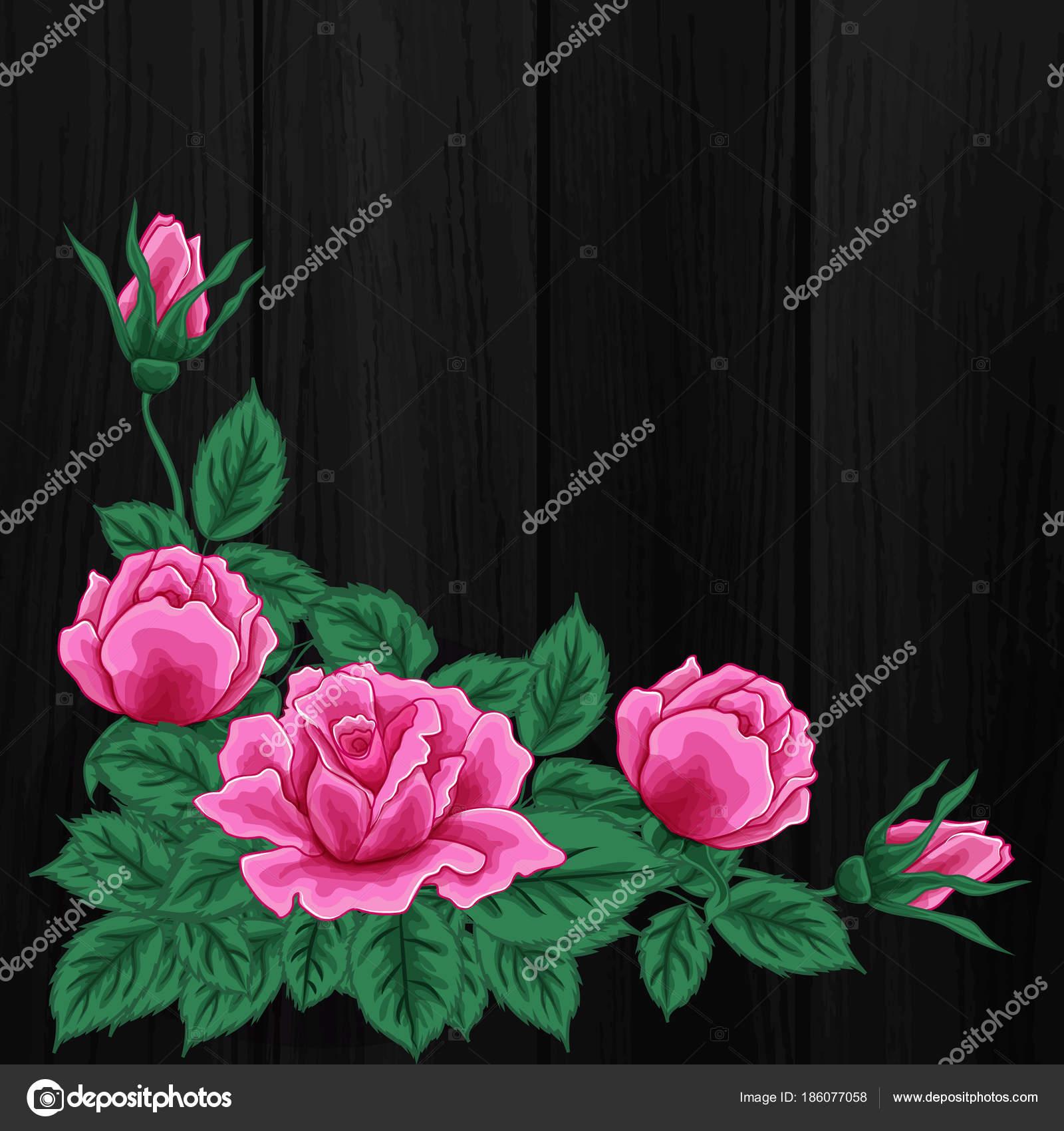 Flowers Black Background Pink Roses Stock Vector Direnkokatti