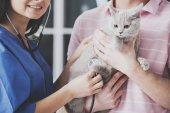 Mladý muž s jeho kočka na návštěvě veterináře