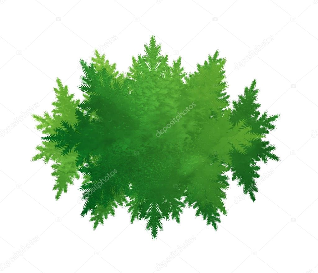 Green forest kaleidoscope frame