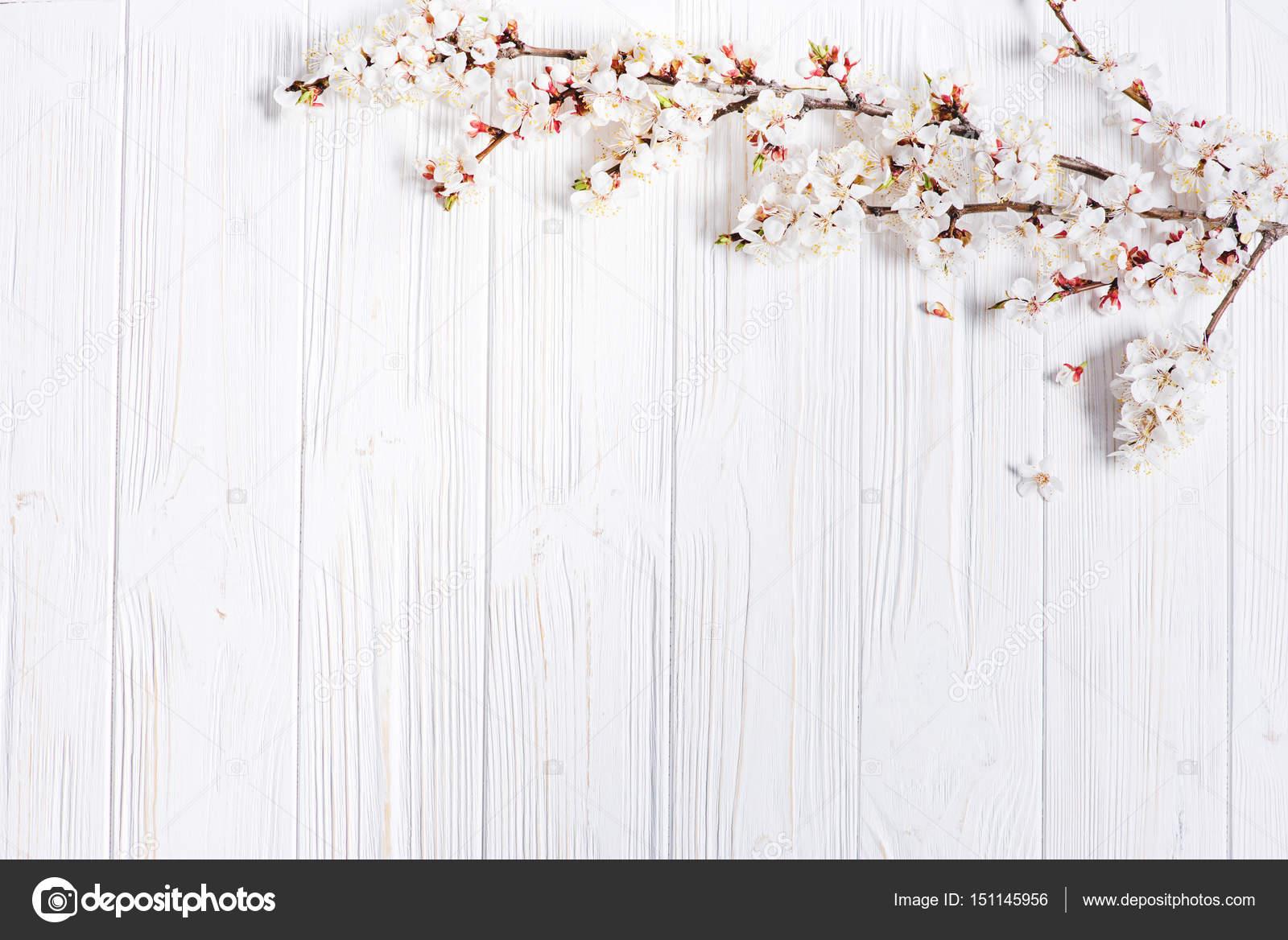 Fondo De Madera Vintage Con Flores Blancas Manzana Y: Fondo: Flores De Primavera De