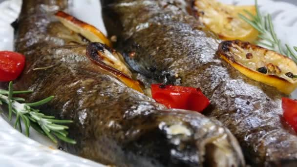 köstlicher Forellenfisch gebacken mit Zitrone, Tomaten und Gewürzen