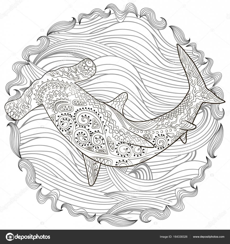Hammerhai mit hohen details — Stockvektor © Lezhepyoka #164338326