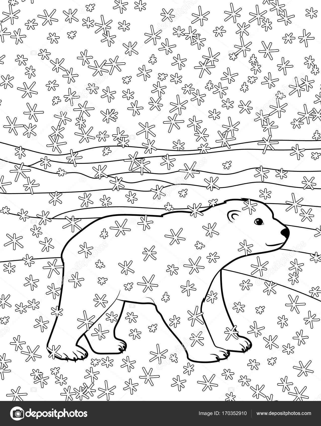 Malvorlagen mit Baby Bär — Stockvektor © Lezhepyoka #170352910