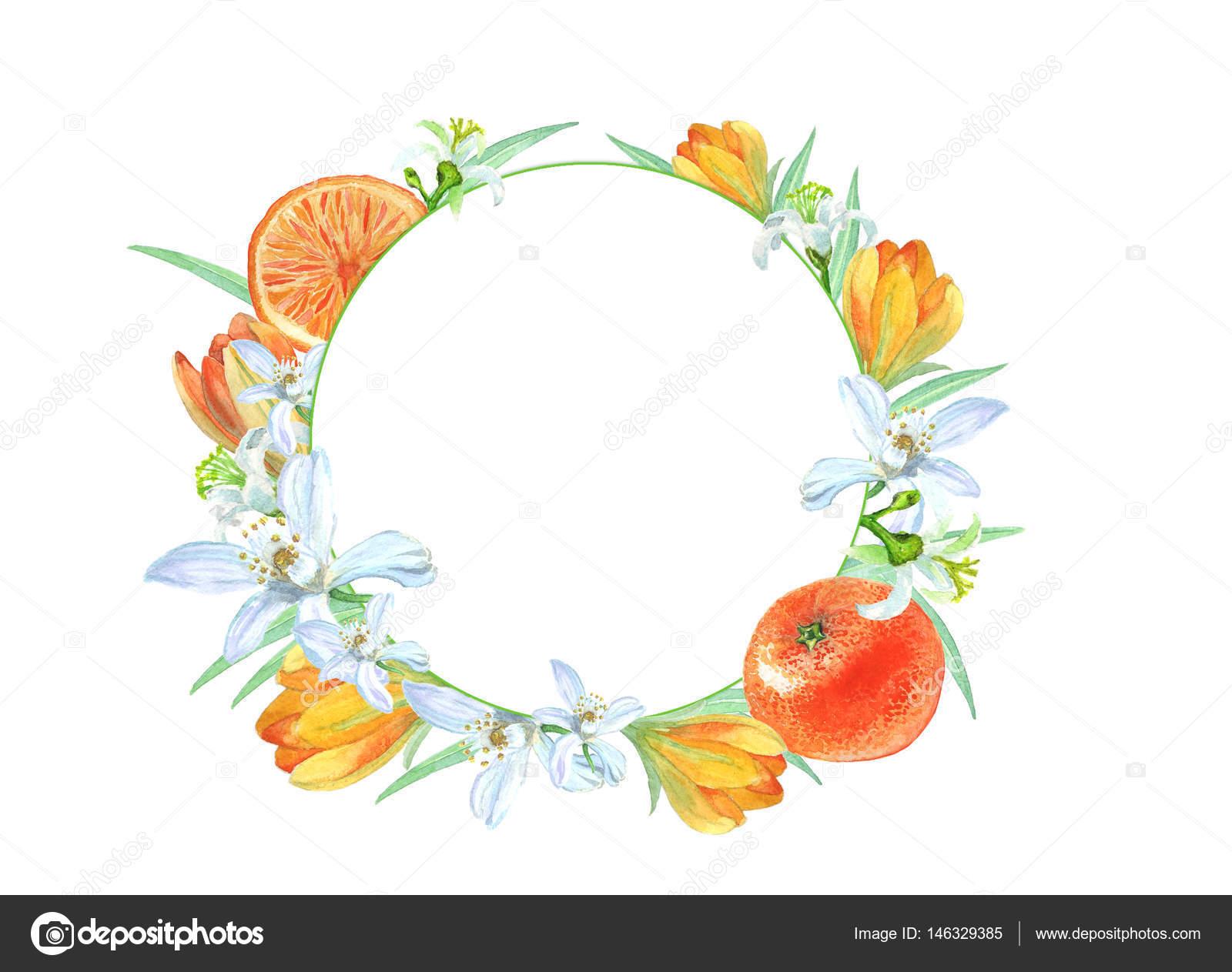 marco redondo con mandarinas y flores — Foto de stock © avdesigner9 ...