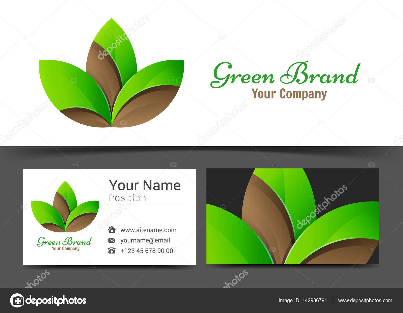 Feuille Symbole De La Spa Corporate Logo Et Carte Visite Signent Modele Design Creatif Avec Composition Didentite Visuelle Entreprise Colore