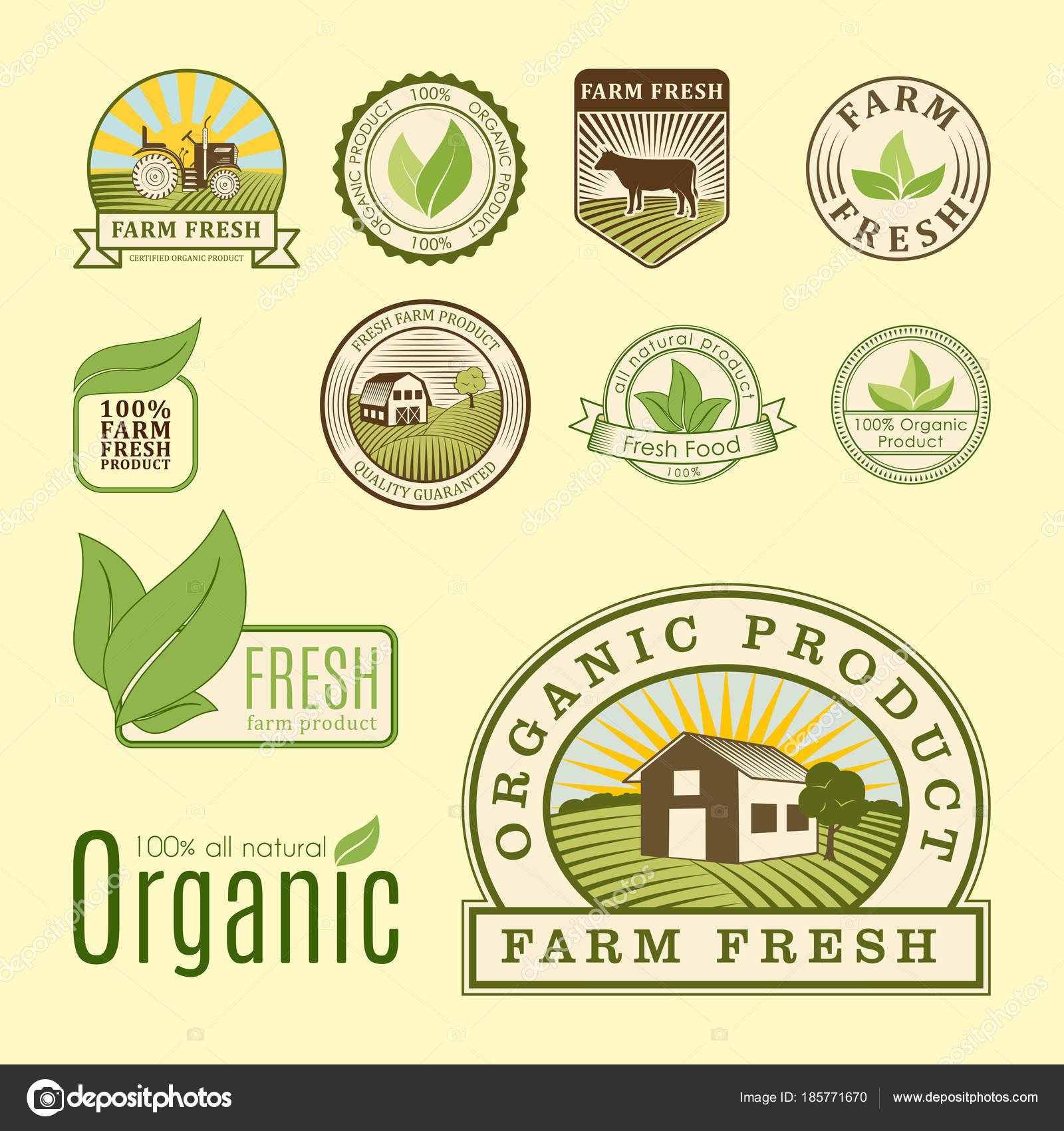 バイオ農場有機エコ健康食品テンプレートとレストランのメニューまたは