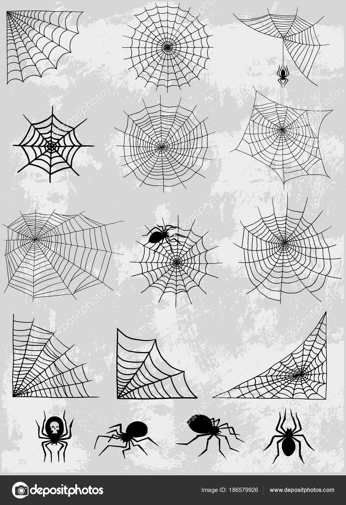 Las arañas web red vector silueta misteriosa naturaleza halloween ...