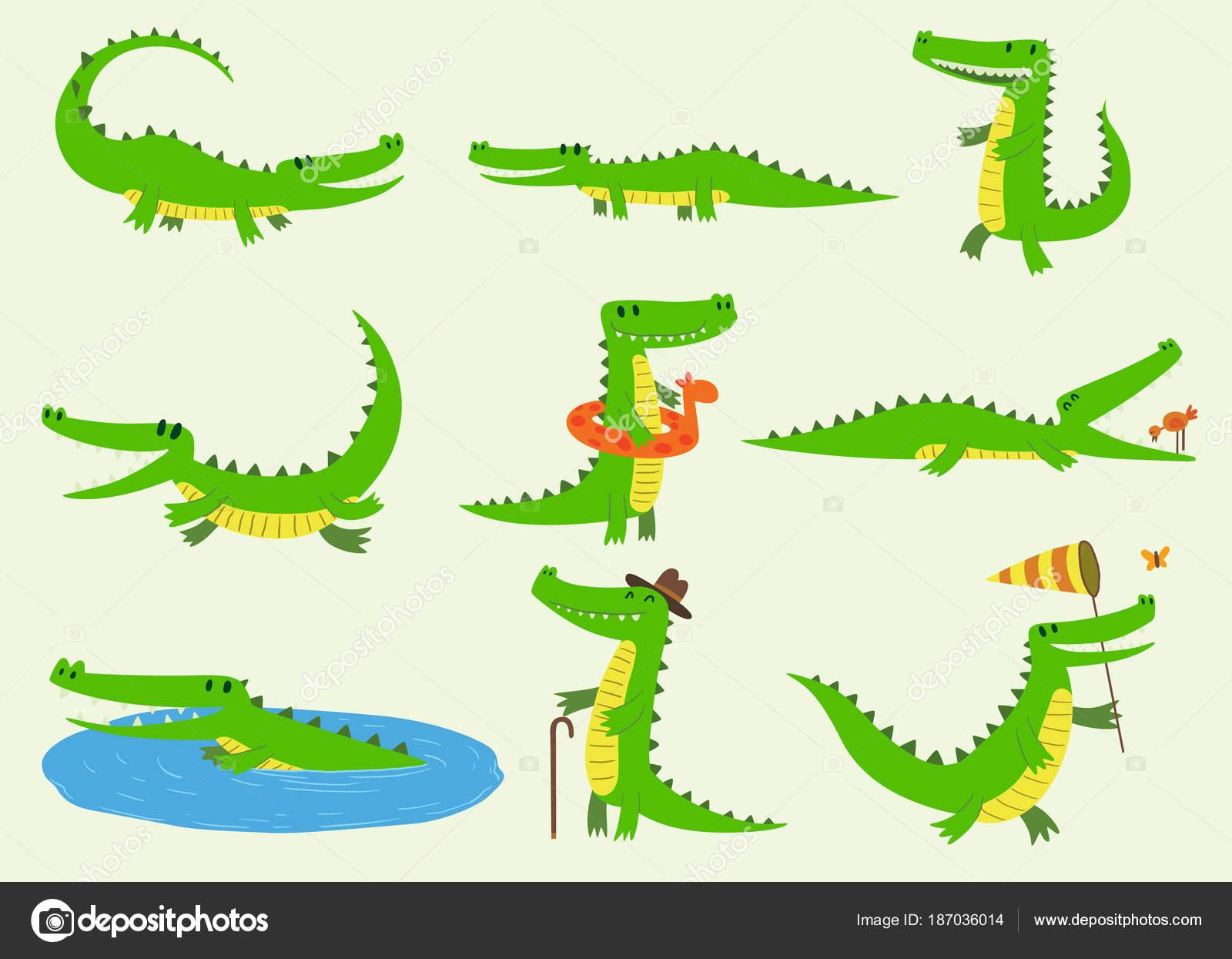 Vecteur de dessin anim caract res de crocodiles animaux de zoo vert diff rentes animal dr le - Dessin anime les crocodiles ...