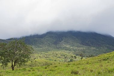 The national park and volcano arenal in the fog, Costa Rica