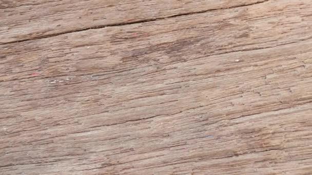 hautnah an der Holzstruktur.